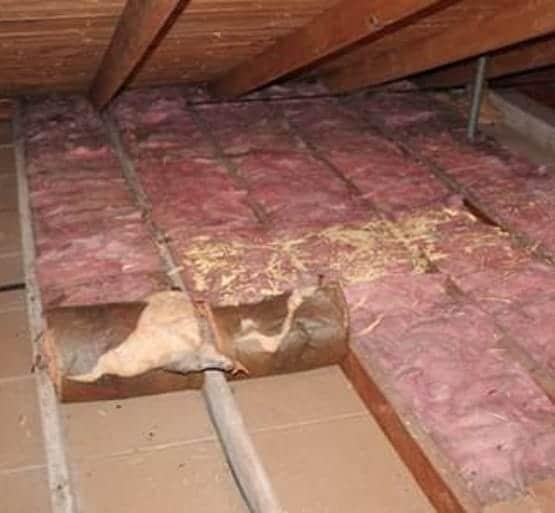 batt insulation removal toronto