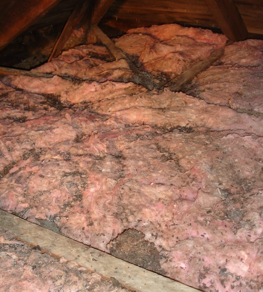 damaged and old insulation