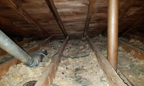 contaminated insulation