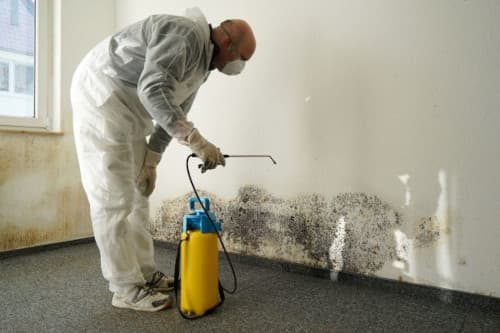 mold-inspections
